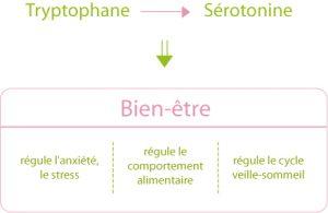 effets-du-tryptophane