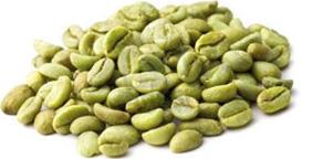 cafe-vert
